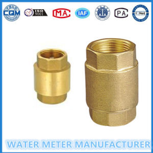 Vertical Brass Check Valve for Water Meter pictures & photos