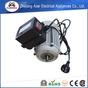 Perfect in Workmanship Low Price Low Power Low Rpm Electric Motors pictures & photos