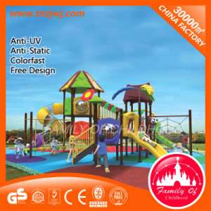 Park Slide Outdoor Playground Equipment for Sale pictures & photos