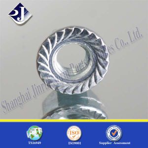 Hex Flange Nut with Zinc Plated pictures & photos