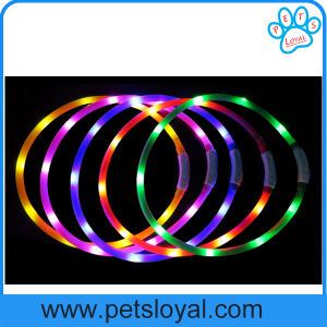 USB Rechargeable Silicone Dog LED Pet Dog Collar (HP-111) pictures & photos
