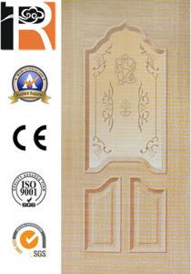 Door Skin for Kitchen Room (TR101) pictures & photos