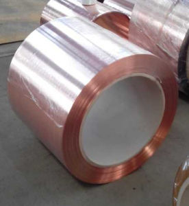 Copper Clad Steel Tape pictures & photos