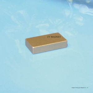 Competitive Permanent Neodymium NdFeB Magnet with High Performance pictures & photos