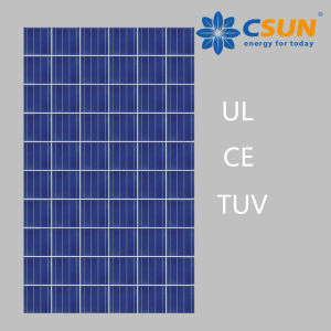 Csun High Quality 300W Poly Solar Panel