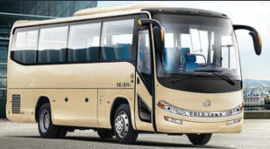 Gold Town Seris Diesel Engine Bus (8-11m Long) pictures & photos