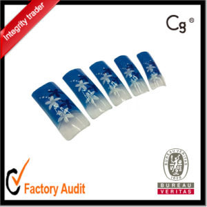 Hot Sale 70PCS Salon Nail Tip More Design Avaiable pictures & photos