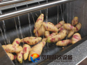 Ginger Washing Machine, Ginger Peeling Machine pictures & photos