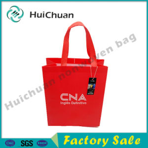 China Manufacturer Non Woven Ultrasonic Shopping Bag pictures & photos