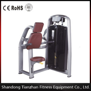 Triceps DIP Body Fit Commercial Gym Equipment pictures & photos
