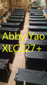 Xlc127+ 12in Line Array, Concert Line Array (1000W RMS) pictures & photos