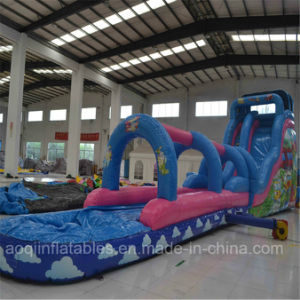 Aoqi Design Inflatable Water Big Slide (aq1036-1) pictures & photos