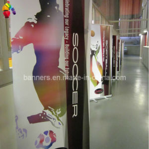 Roll up Banner, PVC Advertising Flex Banner pictures & photos