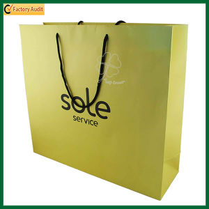 Customized Handle Gift Bag Shopper Paper Bag (TP-PRB005) pictures & photos