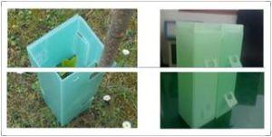 Coroplast Correx Corflute Light Green Plastic Tree Cube, Tree Guard Sleeves, Sureflute Rigid Guards pictures & photos