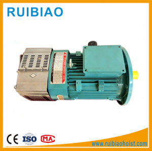 Tower Crane Hoist Motor Vibrator Motor pictures & photos
