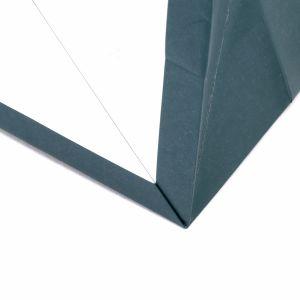 Customize Professional Manufacturer Cheap Men Designs Paper Gift Bag pictures & photos