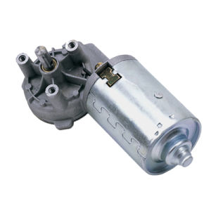 24V with No Load Speed 33rpm 6nm DC Worm Gear Motor Wd Series (MB062FF100-WD0069) pictures & photos