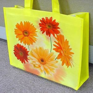 Fashionable Laminated Non-Woven Tote Bag pictures & photos