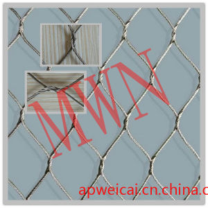 Stainless Steel Wove Mesh pictures & photos