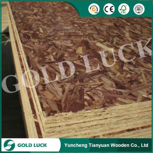 Best Price OSB Board for Outdoor Use pictures & photos