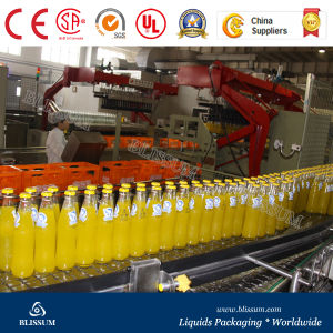 Reliable Pulp Juice Bottling Machine pictures & photos