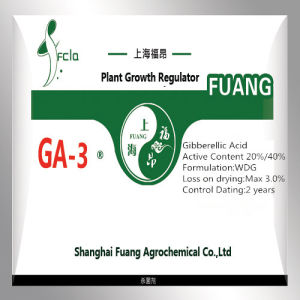 High Quality Plant Growth Regulator Gibberellic Acid Agrochemical Synergistic Agent High Effect pictures & photos