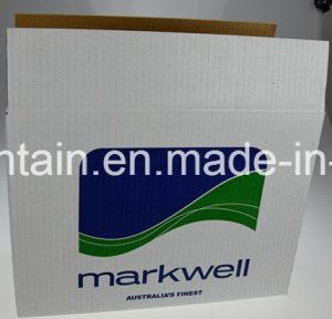 Corrugated Kraft Carton Boxes with Rsc Folding Design