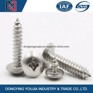 Stainless Steel DIN7985 Cross Recessed Round Head Screws pictures & photos