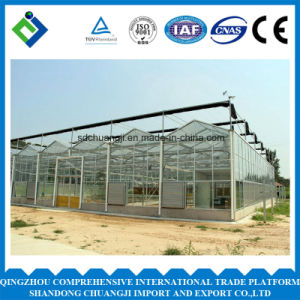 Agriculture Multi Span Polycarbonate Sheet Greenhouse for Planting pictures & photos