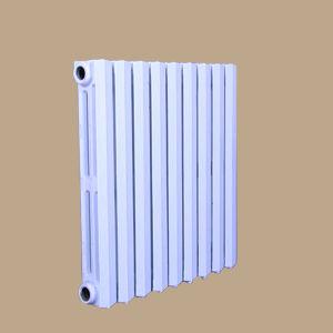 hot water heater radiator for room