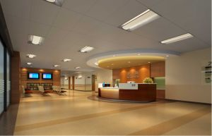 Hospital Projects Hobby Wall Panel Protection pictures & photos