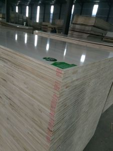 Melamine Blockboard for Kitchen Furniture Use From China pictures & photos