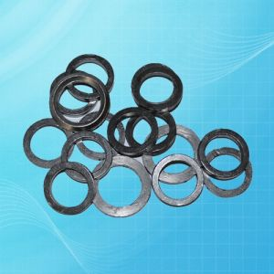 Customized Graphite Gasket for Mechanical Sealing pictures & photos