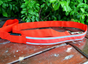 China Factory Price LED Dog Leash