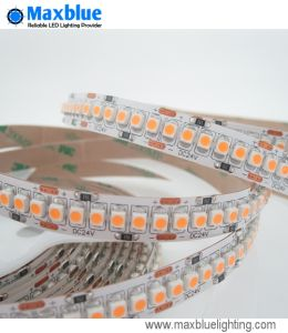 DC12V/24V Flexible LED Strip Light/Christmas LED Light/12 Volt LED Lighting pictures & photos