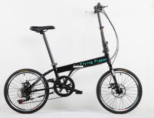 """20"""" City Bicycle with Shimano 6-Speed Folding Bike (FP-FDB-D023) pictures & photos"""