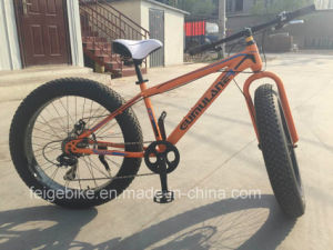Rear 8 Speed Fat Mountain Bicycle (FP-MTB-FAT04) pictures & photos
