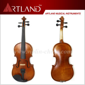 Moderate Violin (MV100) pictures & photos