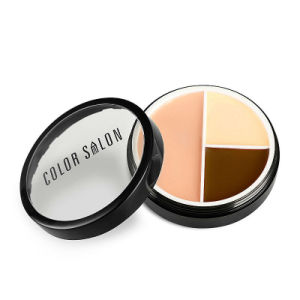 3 Colors Facial Foundation Cream Palette Natural Bronzer Highlighter Makeup Fo0354 pictures & photos