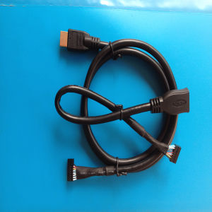 Popular HDMI Cable with DuPont Terminal pictures & photos