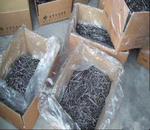 Polish Galvanized Common Nails/Round Wire Nails to Dubai Market pictures & photos