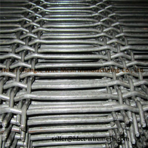 Good Quality Crimped Weave Wire Mesh for Mining and Coal pictures & photos