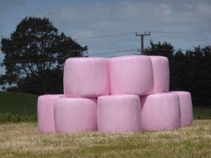 Pink Silage Wrap for New Zealand Market pictures & photos