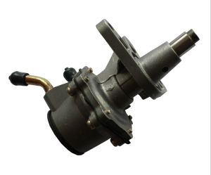 Deutz Fuel Supply Pump (for 1011 series, OE No.: 04272819) pictures & photos