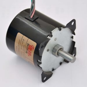 China Single Phase Permanent Magnet Synchronous Gear Motor