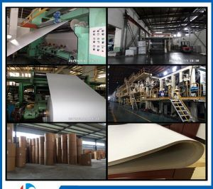 250g Fbb/ Ivory Board/ Folding Box Board pictures & photos