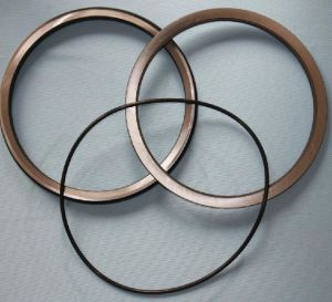 Floating Oil Seal (HF5050) pictures & photos