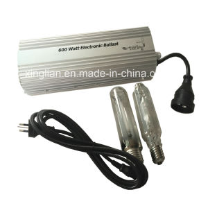 Hydroponics Greenhouse Indoor Plant Grow Light Digital Electronic Ballast 1000watt 600watt 400watt pictures & photos