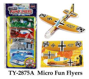 Micro Fun Flyers pictures & photos